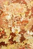 Langzaam verdwenen pellende verf Stock Fotografie