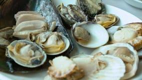 Langzaam Vers de Tweekleppige schelpdieren Koreaans Restaurant van de motieschotel in Jagalchi-Vissenmarkt Busan stock video
