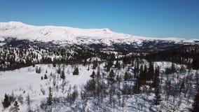 Langzaam vliegend over bomen en het grote landschap van de bergwinter stock videobeelden