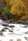 Langzaam Water Royalty-vrije Stock Foto's