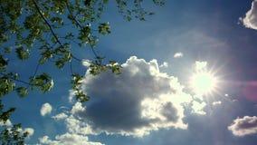 Langzame bewegende wolken op heldere blauwe hemel met zon Boomtakken in de hoek van het kader Statisch Schot stock videobeelden