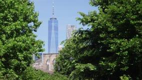 Langzame Gezoemduw in Freedom Tower stock videobeelden