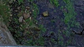 Langzame luchtmening van rivier over brug in Taramundi molen 03 stock video