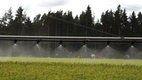 Langzame materiaal van de bosbouw het automatische irrigatie stock videobeelden
