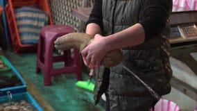 Langzame Motie Aziatische vrouw die de zeer grote Stille Oceaan geoduck in zeevruchtenmarkt houden stock video