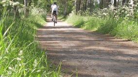 Langzame Motie Een mens berijdt een fiets op een bosweg stock videobeelden