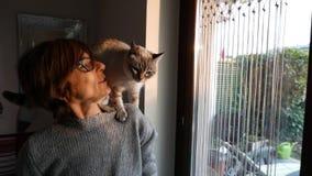 Langzame motie: het binnenlandse kat spelen op de schouder van glimlachende mooie vrouw stock videobeelden