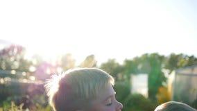 Langzame Motie Het oudere kind werpt zijn lachende broer in de lucht Openlucht activiteiten stock video