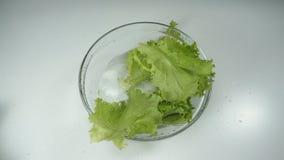 Langzame motie, sla die in het water in een glaskom vallen op de lijst Verse organische greens voor een gezonde voeding stock footage