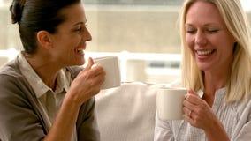 In langzame motie twee vrienden die op de laag zitten die over koffie thuis babbelen stock videobeelden