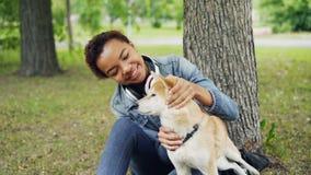 Langzame motie van Afrikaans-Amerikaans meisje die leuke de hondzitting van shibainu in het park op gras strelen onder de boom te stock video