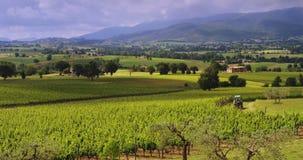 Langzame motie van een tractor die plattelandsweg doorgeven tussen de wijngaardgebieden (de toneelmening van de heuvelsvallei) stock footage