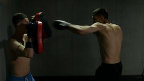 Langzame motie van twee mannelijke vechters die in een gymnastiekstudio opleiden met bokshandschoenen en Thaise stootkussens stock footage