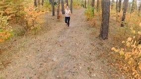 Langzame motielengte van hoog punt van de mooie jogging van de blondevrouw bij de herfstbos stock video