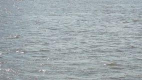 Langzame motiescène van de golven in de rivier met de schitterende zonneschijn op de oppervlakte van rivier stock footage