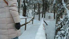 Langzame motievrouw die op houten brug over rivier in bos gaan stock footage