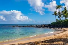 Laniakea海滩 免版税库存图片