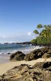 Laniakea海滩 图库摄影