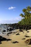 Laniakea海滩III 免版税库存照片