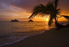 海滩夏威夷lanikai日出 免版税库存照片