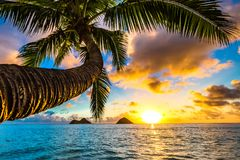 Lanikai Beach Sunrise royalty free stock photos