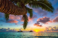Lanikai Beach Sunrise stock photography