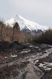 Lanin Volcano, Patagonia Stock Photo