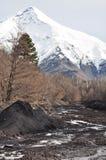Lanin volcano, Patagonia Royalty Free Stock Image
