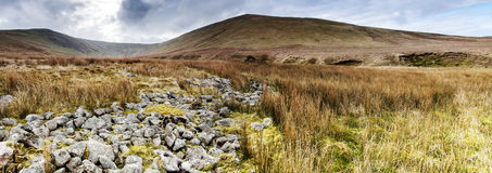 Lank Rigg Royalty Free Stock Images