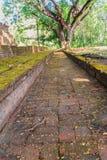 Lanka样式在Muang Kao历史公园破坏Wat Mahathat寺庙塔, Phichit,泰国古城 这个游人 免版税库存图片