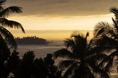 lanka переднего плана собаки пар пляжа смотрит sri к тропический гулять Стоковые Фото