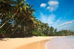lanka plażowy idylliczny sri Obraz Royalty Free