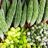 lankian srigrönsaker Royaltyfri Bild