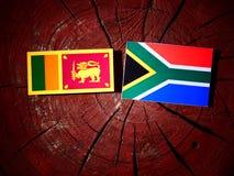 Lankijczyk flaga z południe - afrykanin flaga na drzewnym fiszorku odizolowywającym Obraz Royalty Free