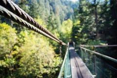 Lanova Lavka bridge at Slovensky Raj Stock Images