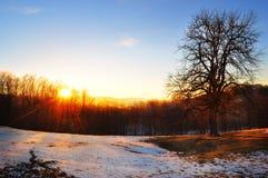 Lanscape горы морозное, сцена зимы Стоковая Фотография