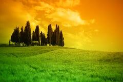 lanscape Тоскана типичная стоковая фотография