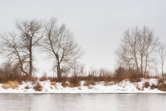Winter Dreams. Lanscape of bare trees in the winter behind the silver water of a river Royalty Free Stock Photos