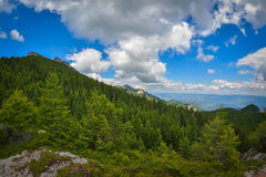 Lanscape in Ceahlau mountains, Romania Stock Photography