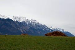 LAnscape con collega le alpi Fotografia Stock