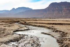 Lanscape da costa de Mar Morto Imagem de Stock Royalty Free