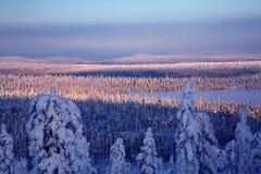 Lanscape de l'hiver Photo libre de droits