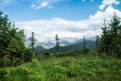 Lanscape de la montaña con el lago Fotografía de archivo libre de regalías