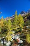 Lanscape dell'alta montagna di autunno Fotografia Stock