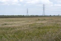 Lanscape dell'erba asciutta con la posta di elettricità Fotografia Stock Libera da Diritti