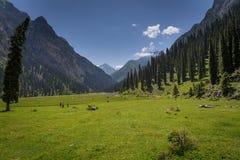 Lanscape della valle di Karakol Fotografie Stock Libere da Diritti