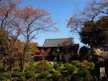 Lanscape en el parque de Ueno Tokio Fotografía de archivo libre de regalías