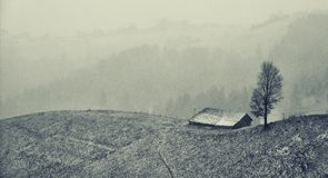 Lanscape gelé noir et blanc quelque part au-dessus des collines près du son Roumanie de Magura Images stock