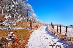 Lanscape gelido della montagna, scena di inverno Immagini Stock