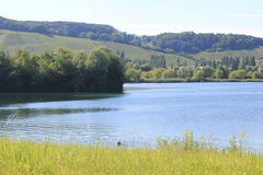 Lanscape at the Mosel region (wine region) Stock Images